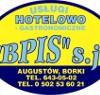 BPIS_mini